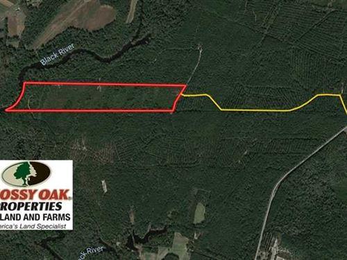 Under Contract, 52 Acres of Hunti : Ivanhoe : Sampson County : North Carolina
