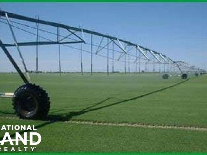 Big Valley Sod Farms & Ground Water : Calhan : El Paso County : Colorado