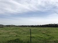 Pastoral 44.95 +/- Acre Farm : Adairsville : Bartow County : Georgia