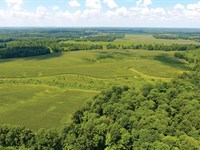 Land Auction In Indiana : Princeton : Pike County : Indiana
