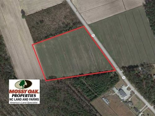 13.7 Acres of Farm Land For Sale : Oriental : Pamlico County : North Carolina