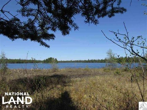 2, Hunting, Recreational, Woods : Finland : Lake County : Minnesota