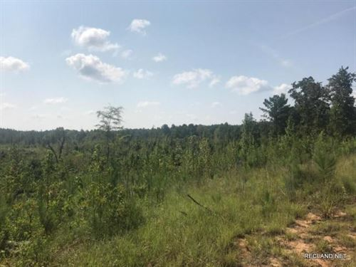 71 Ac, Cut Over Timber Tract For : Kosciusko : Attala County : Mississippi