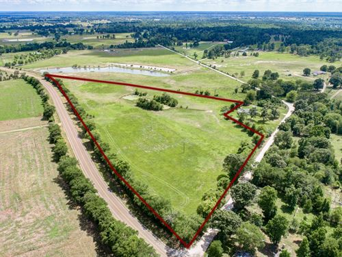 13.5 Acres Fm 1119, Midway, Tx : Midway : Madison County : Texas
