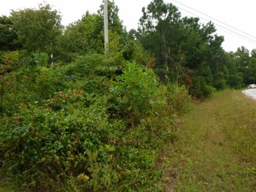 16.27Ac, Creek, Gentle Terrain : Crawford : Overton County : Tennessee