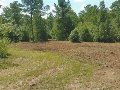 22+/- Acres Coleta Valley : Talladega : Clay County : Alabama