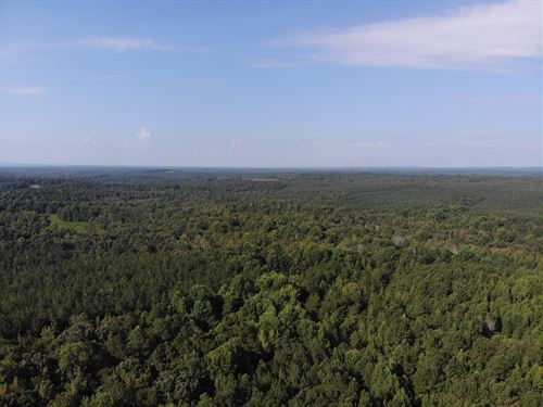 79.76 +/- Acres On Turkey Creek : Carrollton : Carroll County : Georgia