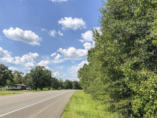 302 Acres Deweyville : Orange : Newton County : Texas