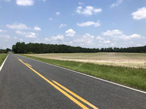 Academy Tract : Gibson : Scotland County : North Carolina