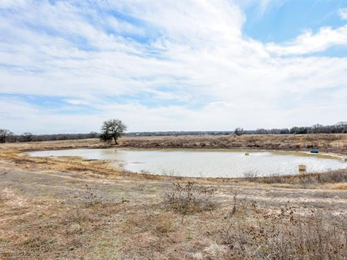 75.5 Acres In Stephenville, TX : Stephenville : Erath County : Texas