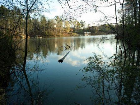 Camp Corinth Cove Lot #3 : Addison : Winston County : Alabama