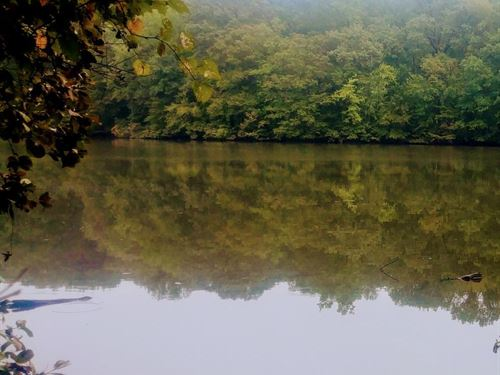 Affordable 5 Acre Lake Front Proper : Roxboro : Person County : North Carolina