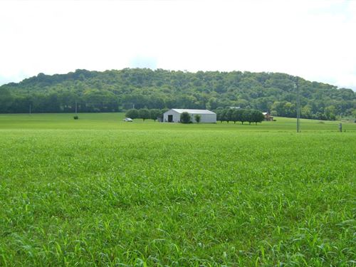 Kelso Mulberry Road Tract : Mulberry : Lincoln County : Tennessee