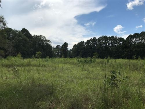 15.5 Acres On Highway 27 With Artes : Tylertown : Walthall County : Mississippi