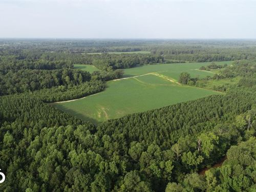 101 Acres in Selma, NC : Selma : Johnston County : North Carolina