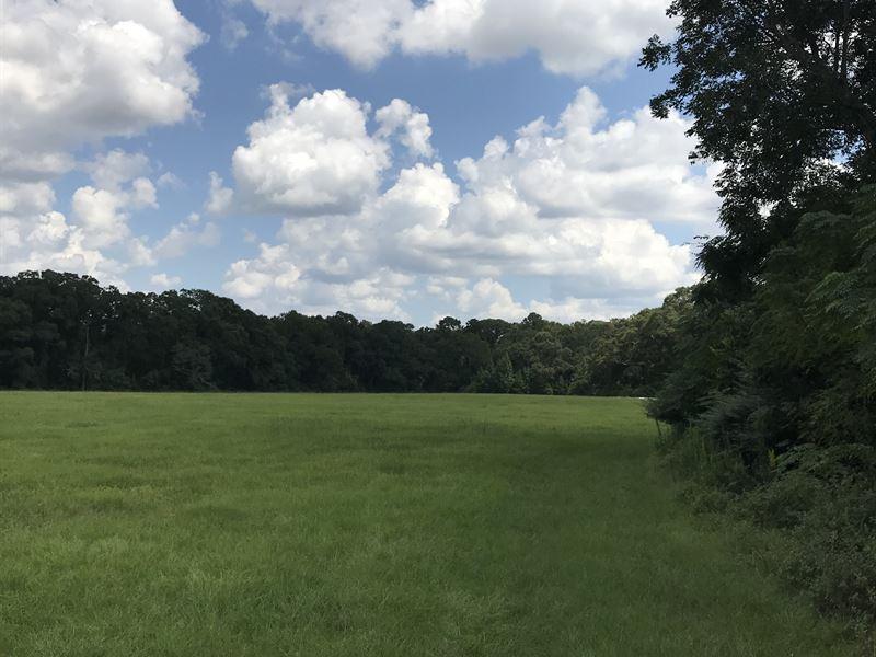 573+/- Acres - Offered Divided : Farm Auction : Plains