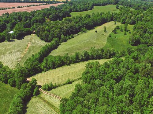 Beautiful Tennessee Farm : Decaturville : Decatur County : Tennessee