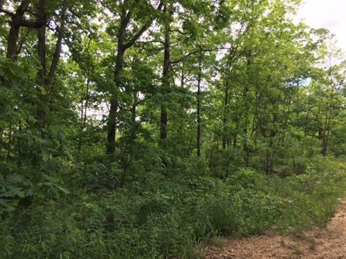 89.87+- Acres Hunters Paradise : Palmer : Grundy County : Tennessee