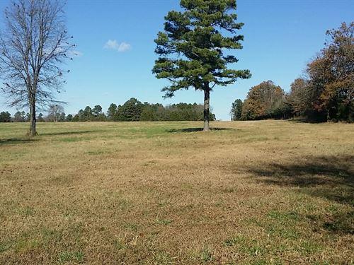 Hunting Land In Clinton, Arkansas : Clinton : Van Buren County : Arkansas
