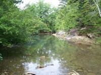 425 Acres Prime Ozarks Recreational : Dennard : Van Buren County : Arkansas