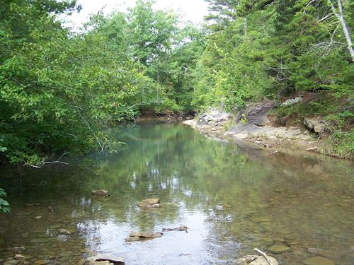 425 Acres Prime Ozarks Recreational : Dennard : Van Buren County : Arkansas