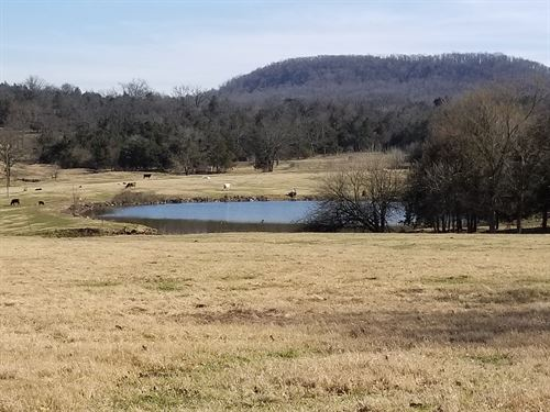 Home & Large Acreage, Views : Berryville : Carroll County : Arkansas