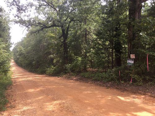 Recreational Land Home Site : Camden : Ouachita County : Arkansas
