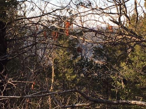 Ozarks Acreage Adjoining Corp Lake : Elizabeth : Fulton County : Arkansas