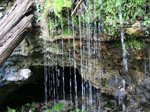 Hunting Land For Sale in Arkansas : Eureka Springs : Carroll County : Arkansas