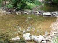 Great Hunting Acreage in Arkansas : Evening Shade : Sharp County : Arkansas