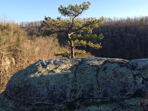 Arkansas Hunting Property Joining : Harriet : Marion County : Arkansas