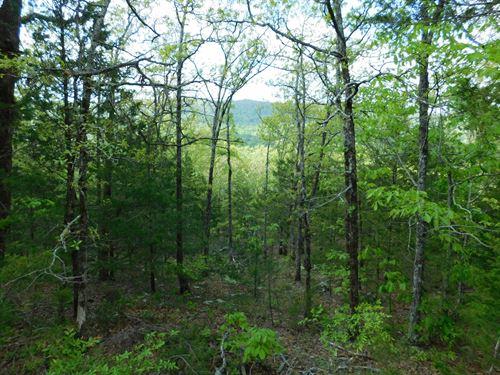 Lot 3, Arkansas Ozark Mountains : Jasper : Newton County : Arkansas
