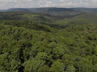 Recreational & Hunting Property Van : Leslie : Van Buren County : Arkansas