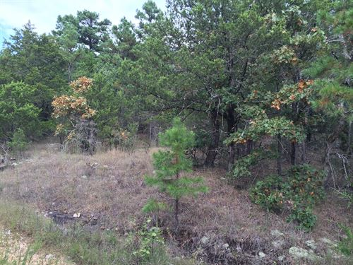 No.01575 44.74 Wooded Acres Hunting : Melbourne : Izard County : Arkansas