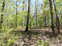 Wooded Acreage Mountain View : Mountain View : Stone County : Arkansas