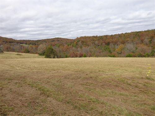 Lake Area Farm And Timber Property : Omaha : Boone County : Arkansas