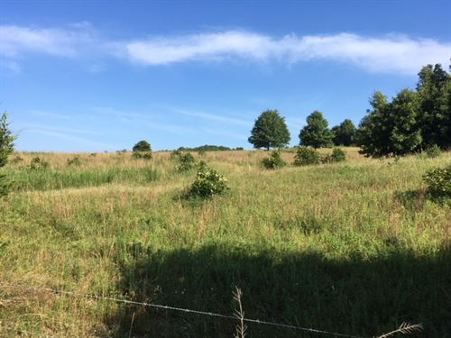 Cattle Farm Hunting Property : Salem : Fulton County : Arkansas