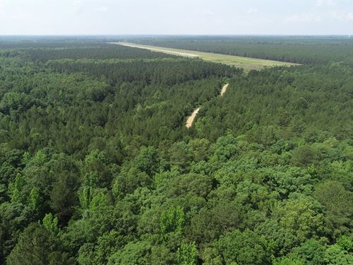 Airport Tract 3,454 ac Timber Land : Sheridan : Grant County : Arkansas