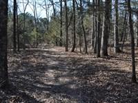 Acreage With Spectacular Views : Shirley : Van Buren County : Arkansas