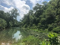 Sharp County, AR Hunting Land Creek : Williford : Sharp County : Arkansas