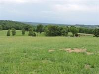 Cattle Horse Farm Bull Shoals Lake : Yellville : Marion County : Arkansas