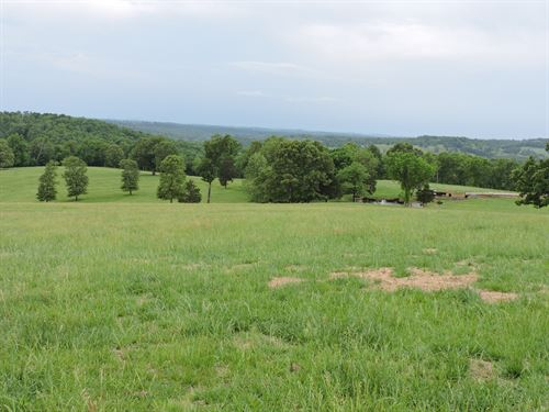 Cattle Horse Farm Bull Shoals Lake : Yellville : Marion County : Arkansas