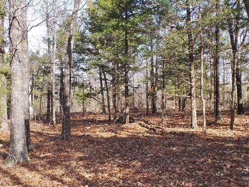 Land 3 Minutes From Yellville AR : Yellville : Marion County : Arkansas