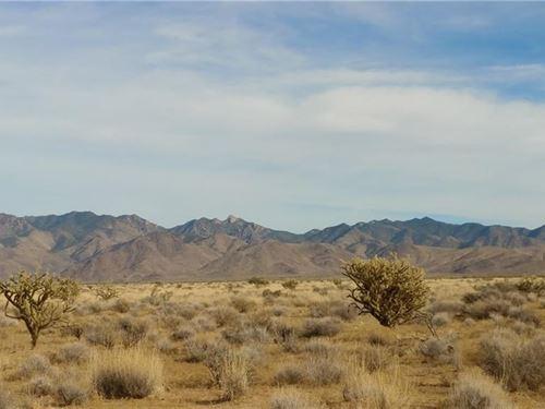 5 Acres Gateway Acres, Dolan : Dolan Springs : Mohave County : Arizona