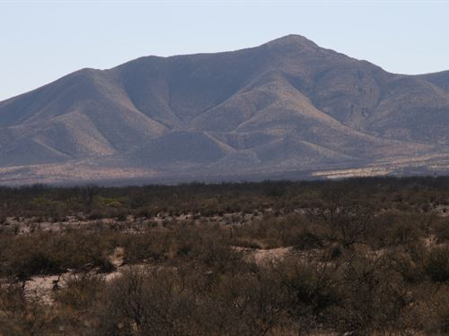 420 Acre Ranch In McNeal AZ : McNeal : Cochise County : Arizona