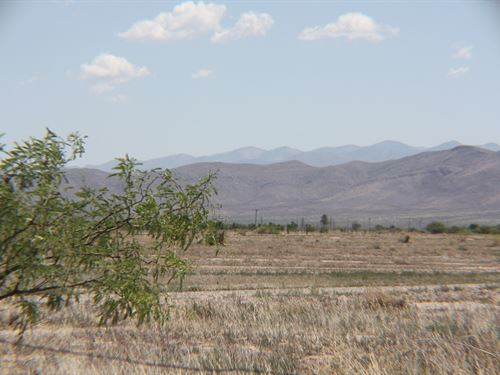 Scenic 36 Acres Main Road McNeal : McNeal : Cochise County : Arizona