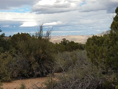 38 Stunning Acres That Priced to : Hackberry : Mohave County : Arizona