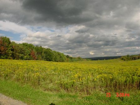 Country Acres Bordering State Park : Enfield : Tompkins County : New York