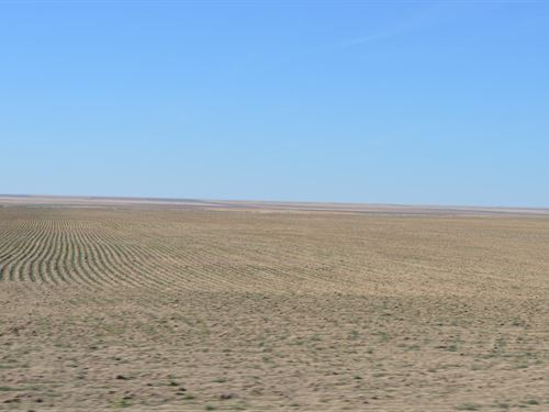 Kiowa County Colorado Farm/Ranch : Arlington : Kiowa County : Colorado