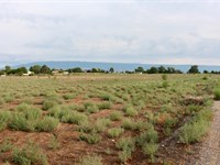 19 Acre Building Site Irrigation : Austin : Delta County : Colorado
